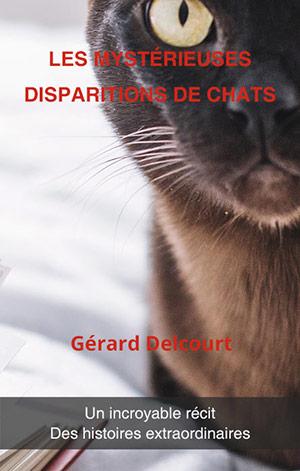 chat perdu que faire